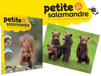 la-petite-salamandre-abonnement-1-an_fr_696.jpg