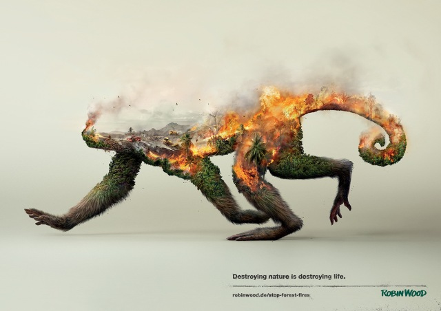 Destroying-Nature-Is-Destoying-Life