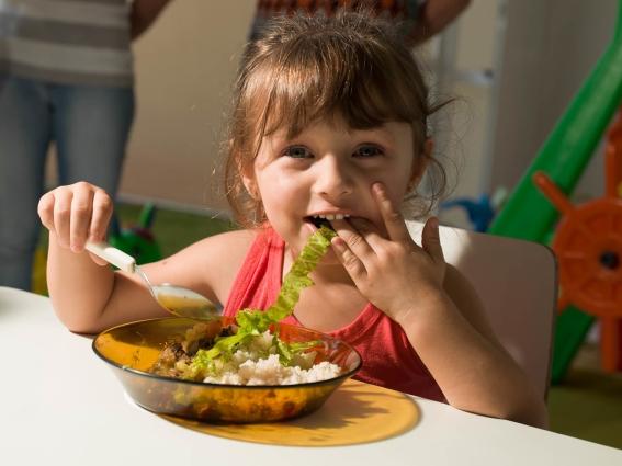 Ecological Food in School in Brazil